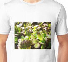 Spicy Salad Unisex T-Shirt