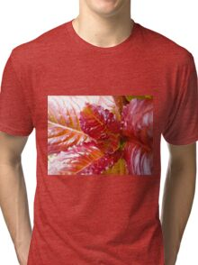 """Cimmaron"" Red Lettuce Tri-blend T-Shirt"