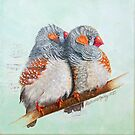 Zebra Finches by Katherine Appleby