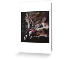 Prime Suspect Greeting Card