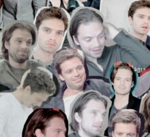 sebastian stan Sticker