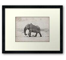 Rocky Elephant Framed Print