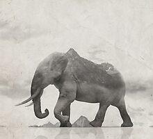 Rocky Elephant by HenryWine