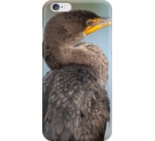 Double-Crested Cormorant #1 iPhone Case/Skin