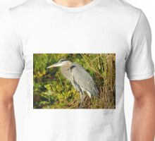 STOCK ~ Great Blue Heron #2 Unisex T-Shirt