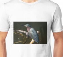 STOCK ~ Green Heron #1 Unisex T-Shirt
