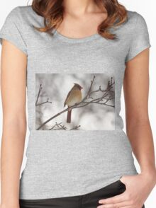 Perched Female Red Cardinal Women's Fitted Scoop T-Shirt