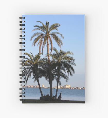 Palm trees in florida Spiral Notebook