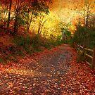 Walk alone by MarianBendeth