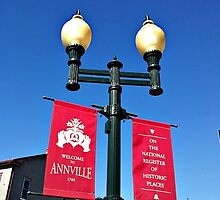 Street Lamp Banners - Hometown Pride by Jane Neill-Hancock
