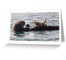 Crab Anyone .... Greeting Card