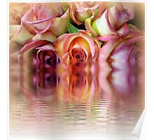 Rosewater Reflections Poster