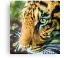 Eye Of The Tiger (TS) Canvas Print