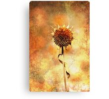 A Single Flower Canvas Print