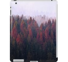 The Ridge iPad Case/Skin