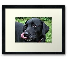l can touch my nose with my tongue Framed Print