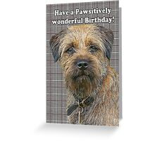 Border terrier birthday greeting card Greeting Card