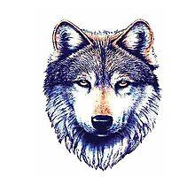 Dire Wolf Photographic Print