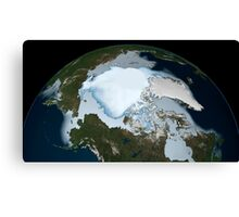 Planet Earth showing sea ice coverage in 1980. Canvas Print