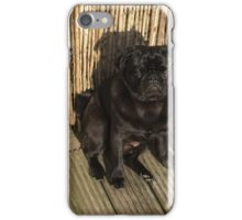 Pug & Beer iPhone Case/Skin
