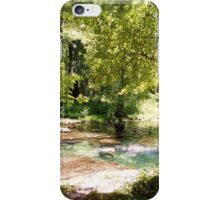 Peace and Quiet at Peacock Springs  iPhone Case/Skin
