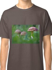 Where the fairies roam..! Classic T-Shirt
