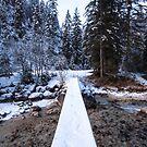 Bavarian Alps Path - 4/4 by Luka Skracic
