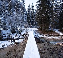 Bavarian Alps Path - 4/4 by Luka Skracic