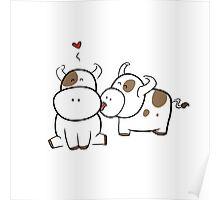 Cute cows Poster