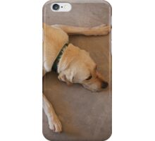 Tired Pooch iPhone Case/Skin