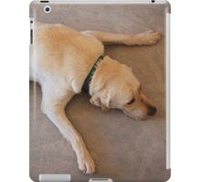 Tired Pooch iPad Case/Skin