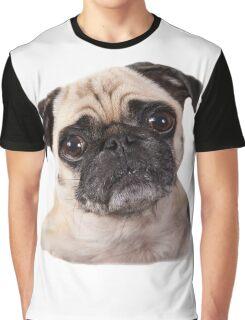 cute little pug dog Graphic T-Shirt