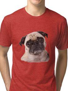 cute little pug dog Tri-blend T-Shirt