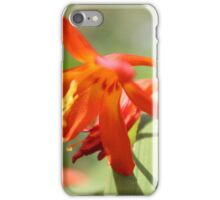 Flower II iPhone Case/Skin