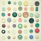 The Button Collection by Cassia Beck
