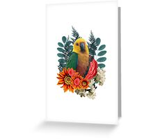 Nature beauty Greeting Card