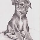 Chorkie puppy drawing by Pam Humbargar