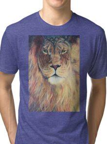 Aslan's Eyes Tri-blend T-Shirt