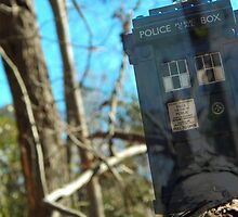 The TARDIS by stephenstoys
