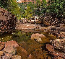 Ridge Pool by barkeypf