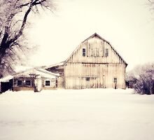 Winter Textures by BarnArtandMore