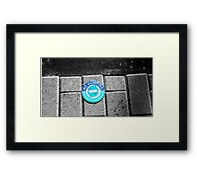 Swimming with the Fishes Framed Print