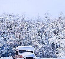 Betsey in the Snow by Lynn Garwood