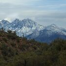 Four Peaks Winter by Sue  Cullumber
