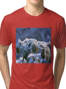 Frosty Leaves Tri-blend T-Shirt