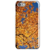Looking UP  …  To Fall  iPhone Case/Skin