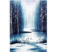 'Winter Trio' - Winter Heron Scene Photographic Print