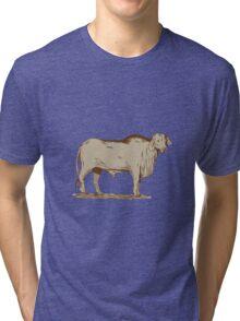 Brahman Bull Drawing Tri-blend T-Shirt
