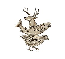 Deer Trout Quail Drawing Photographic Print