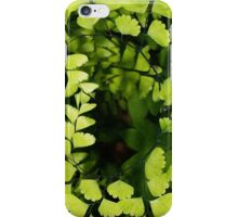 Maidenhair fern iPhone Case/Skin